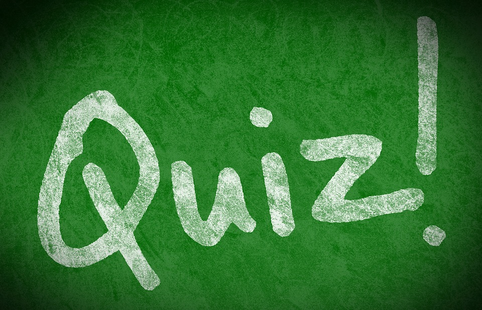 Educational Quizzes – Our Review