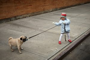 Self awareness and mental health. a young girl tries to walk a dog who is reluctant to move