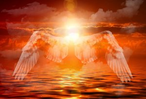 reasons for anger - wings over a sunset with the sun blazing high in the sky